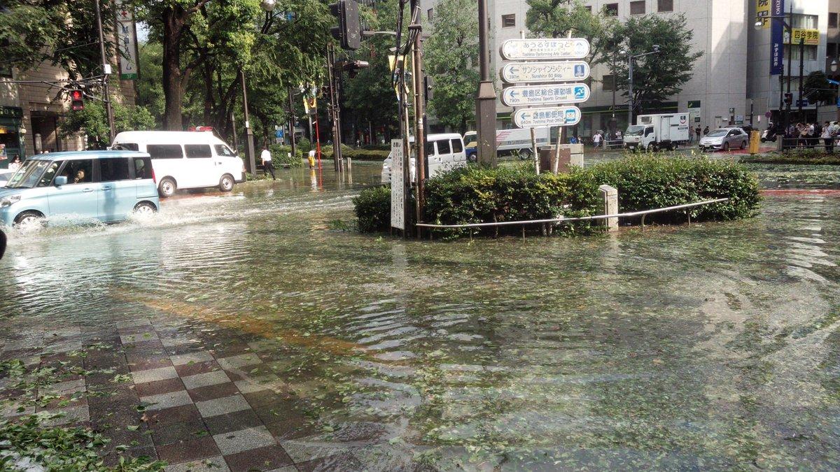 池袋でのさっきのゲリラ豪雨と雹のせいで葉っぱが落とされてサンシャイン通り前の道がとんでも無いことになってる((((゜д゜;)))) https://t.co/CvfDEAXhG3