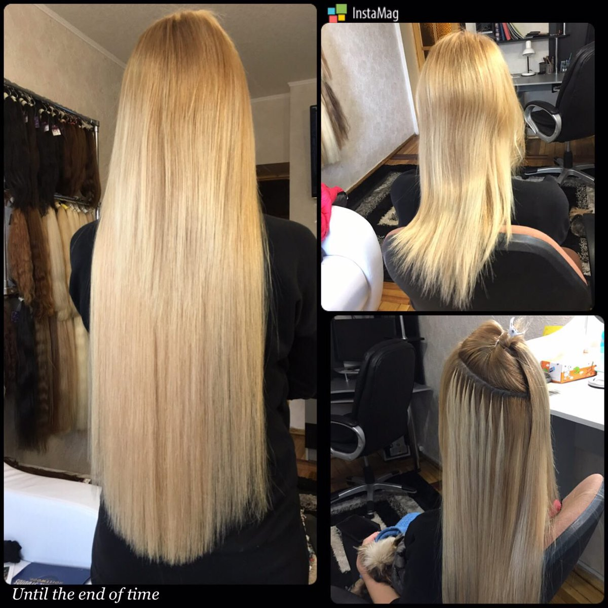 Julia gilas on twitter best hair extensions in san diego 300 julia gilas on twitter best hair extensions in san diego 300 email ghalenmy httpst6vqwj4qros pmusecretfo Image collections