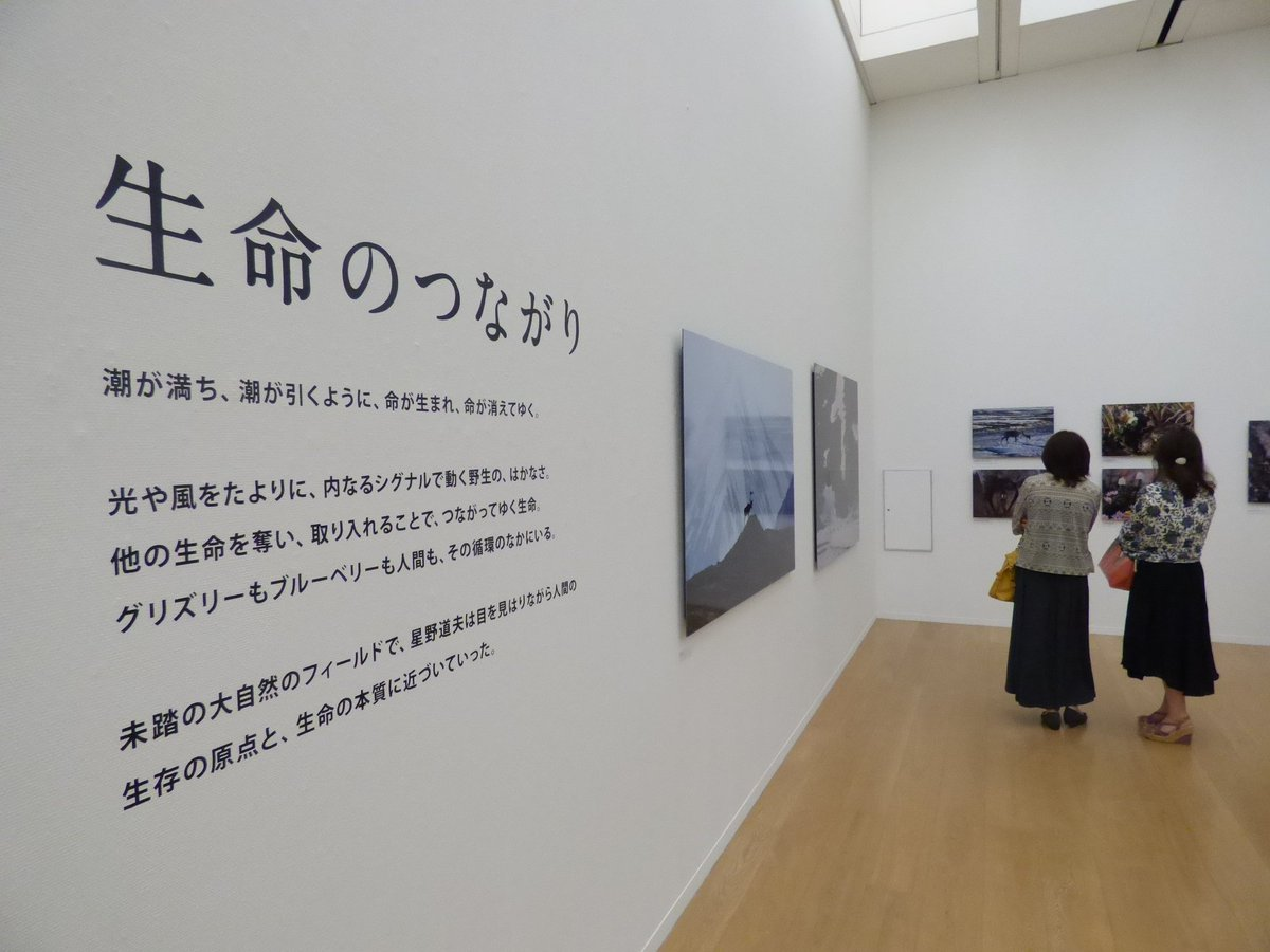 """長崎県美術館 on Twitter: """"【没..."""