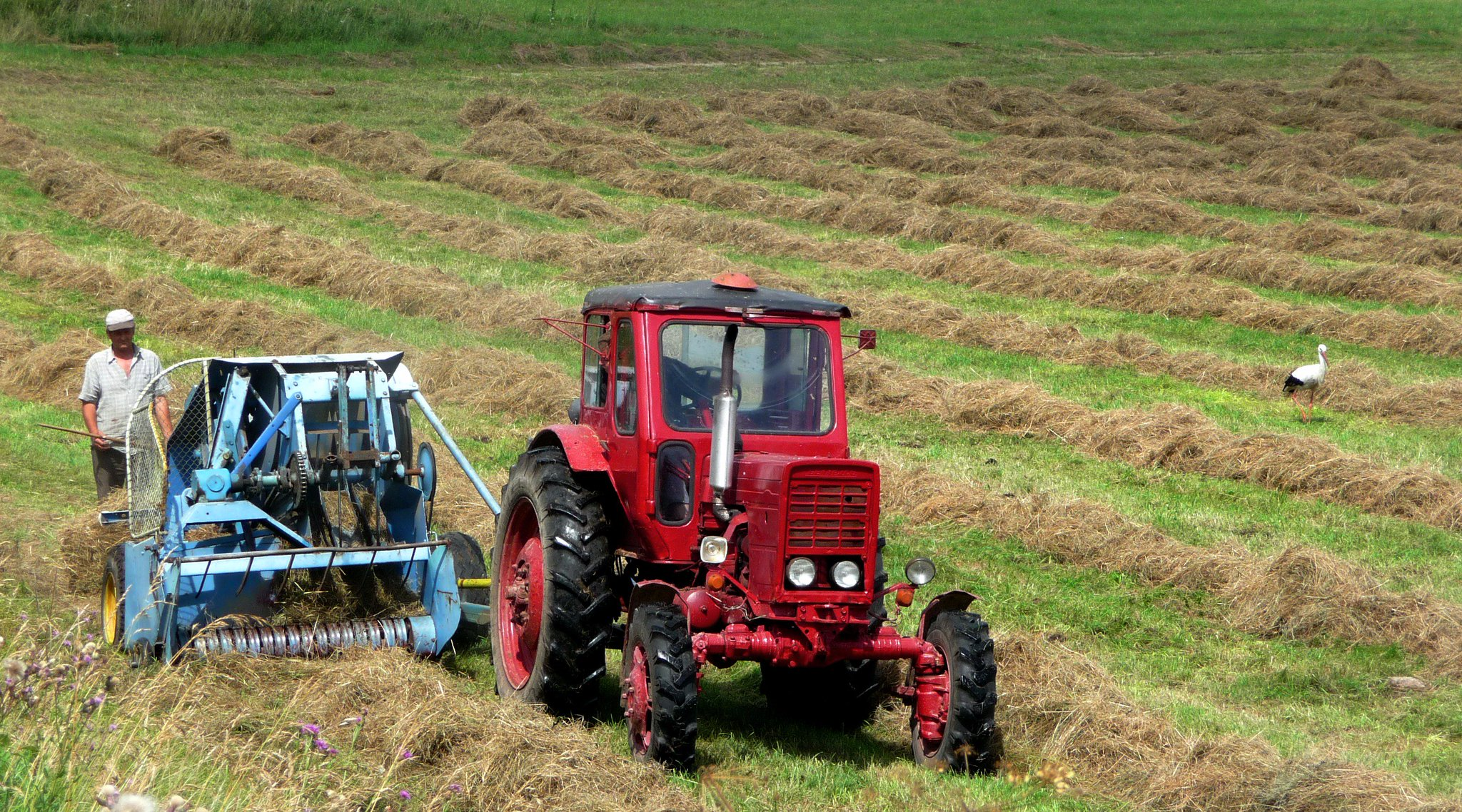 Estonian experience underlines the potential of EAFRD #financialinstruments for providing affordable finance rapidly to rural businesses https://t.co/1nfppYGaK8