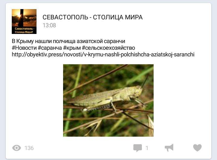Парубий объявил о выходе нардепа Петренко из фракции БПП - Цензор.НЕТ 9281