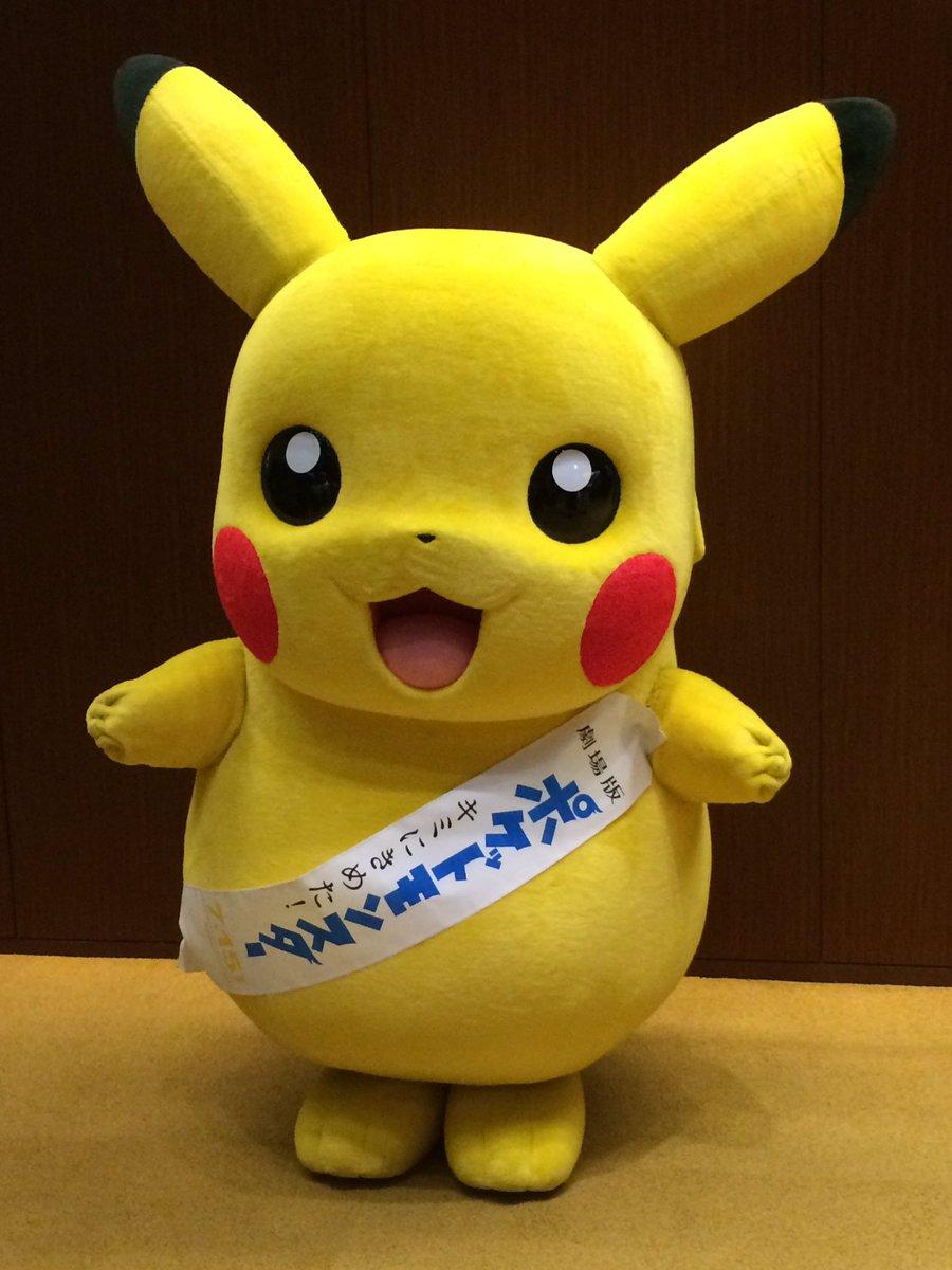 """ヒナシ on twitter: """"#ポケモン #キミにきめた の試写会に行って来まし"""