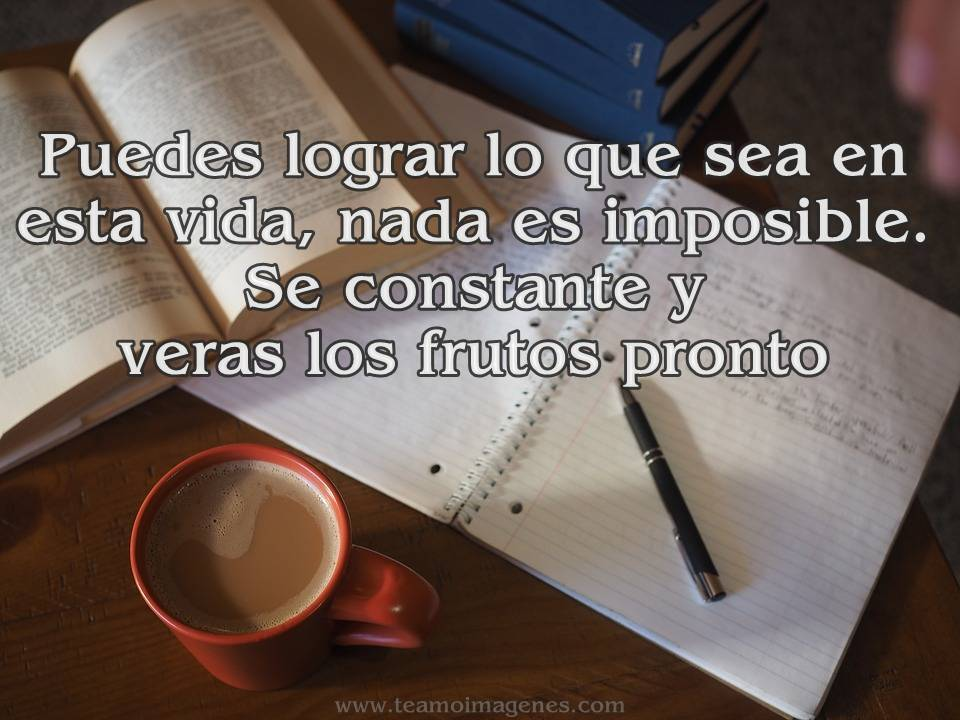 Frases Para Novios On Twitter Https T Co Ulv005zmc3
