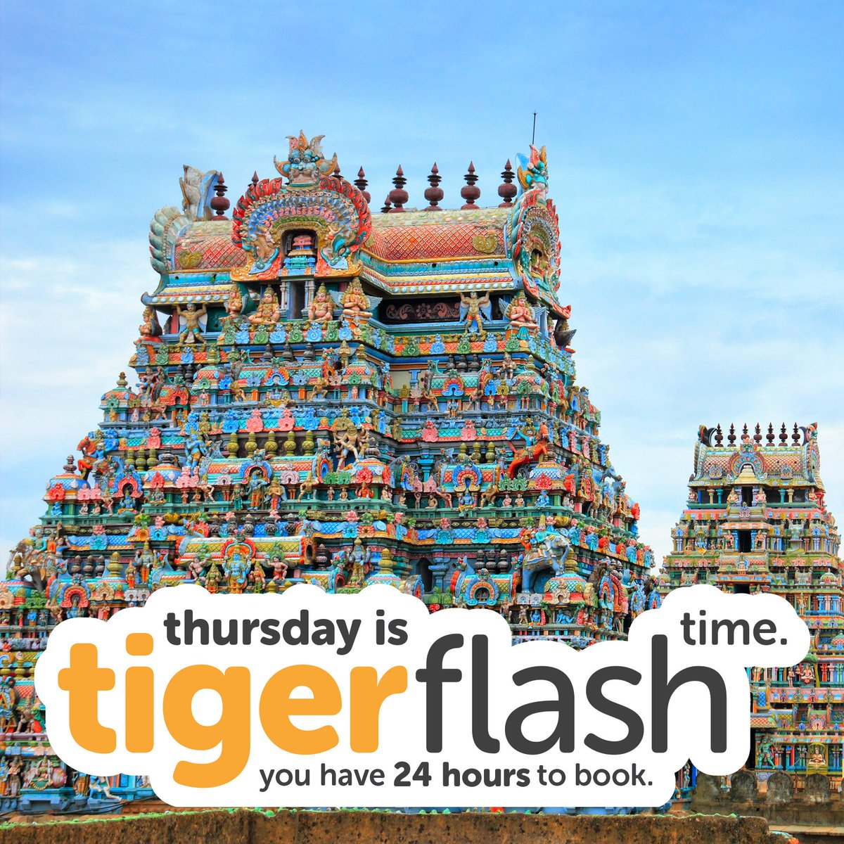 Travel to Trichy from only $139* before we bid #Tigerflash goodbye! More good-buys: https://t.co/tESRzrZmAl Look out for more at @flyscoot! https://t.co/XujBsathVX