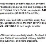 A few more of the many benefits of peatland restoration. #peatlandaction #biodiversity