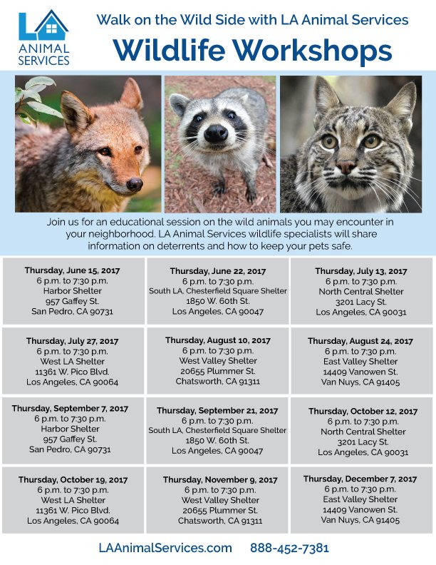 La Animal Services On Twitter Wildlife Workshop Tonight 6pm
