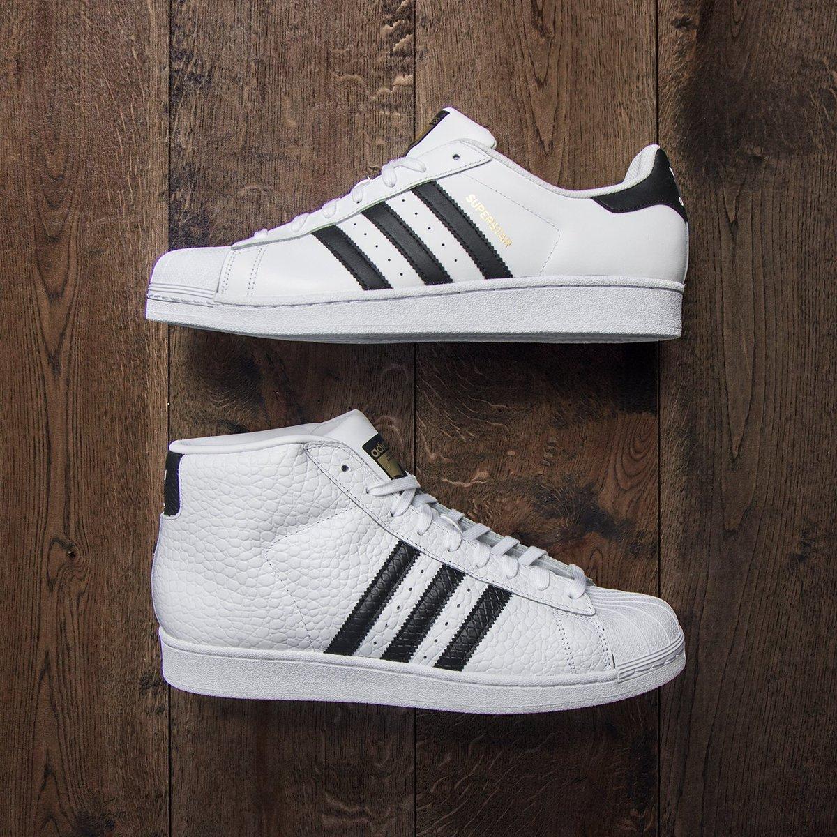 Adidas Pro Model (White) CQ0624  Jimmy Jazz