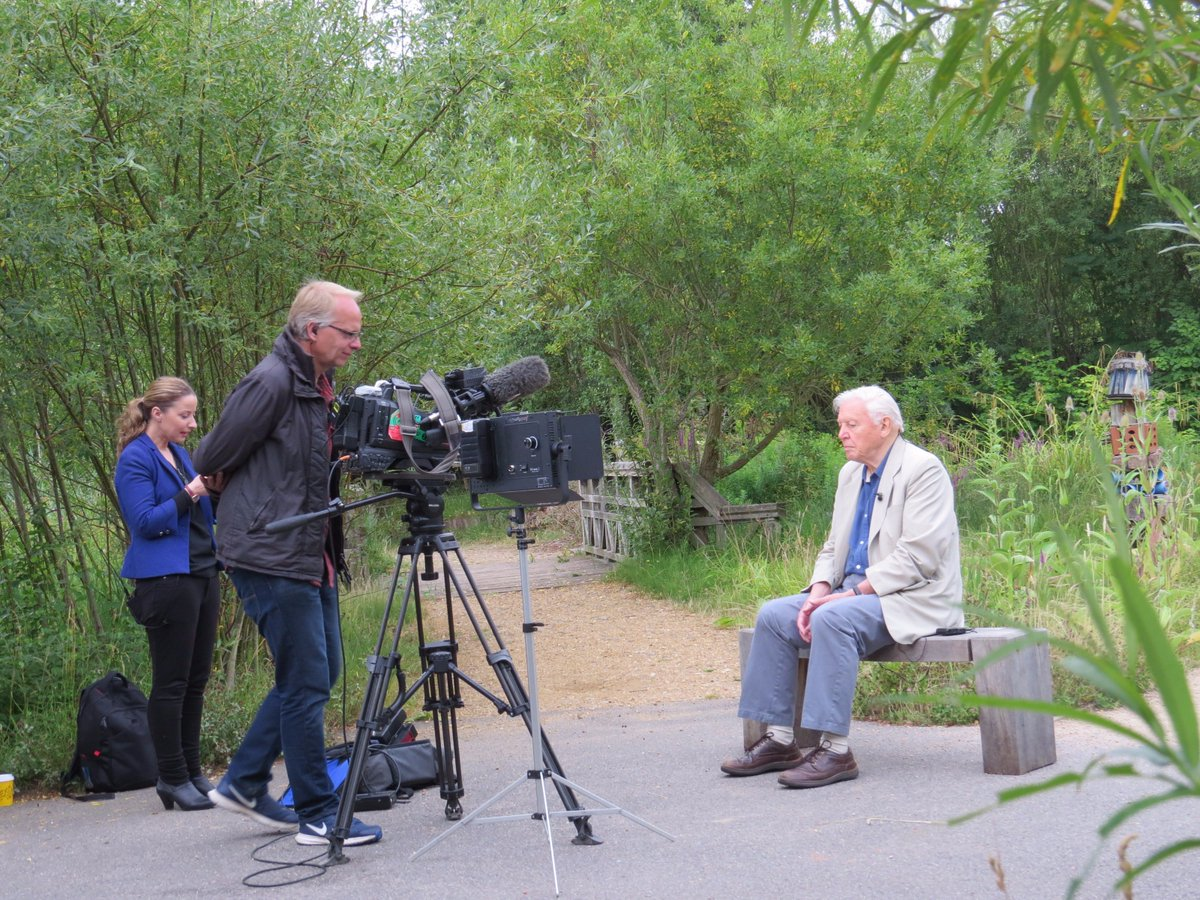 Sir David Attenborough here launching #ButterflyCount Get your spotter sheet from @savebutterflies and join in https://t.co/pCfR3d7L0B