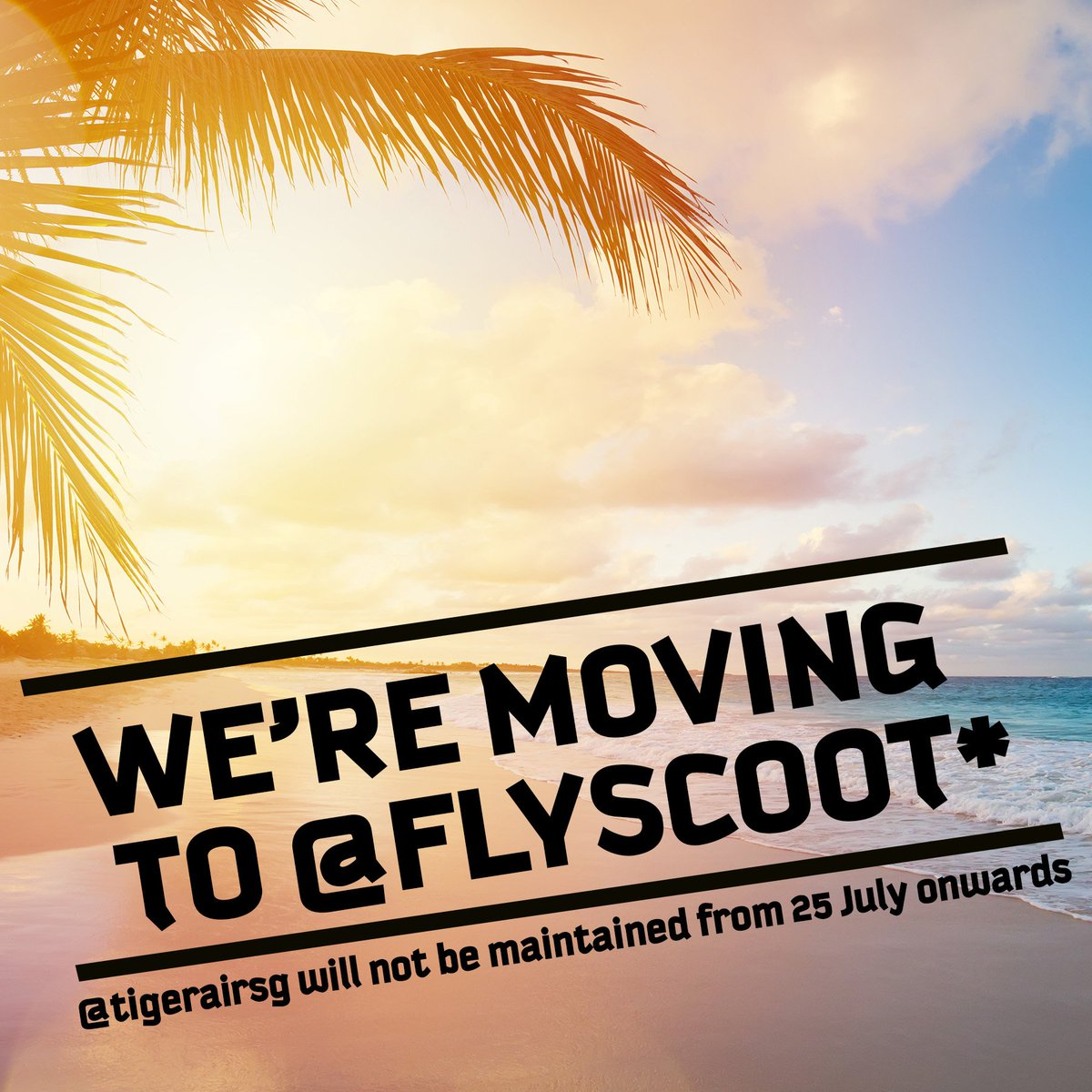 Join us over @FlyScoot! ✈️ @TigerairSG will not be actively maintained from 25 July onwards, but the fun continues @FlyScoot! https://t.co/3vW4W2N9JJ