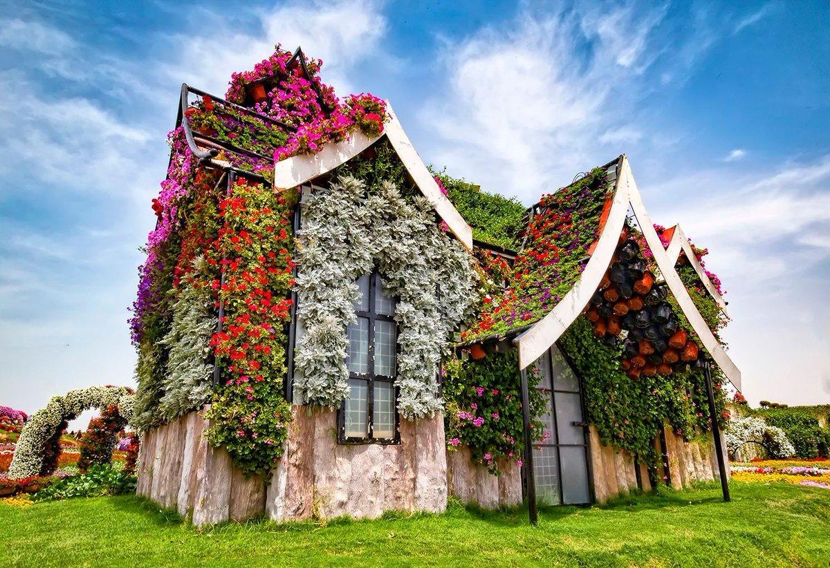 World Love Flowers On Twitter Loveflowers Garden Dubai