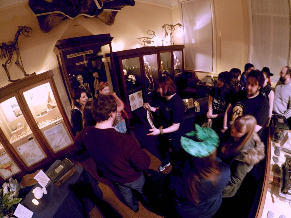 Woolly Mammoth IpswichMammoth Twitter - 10 awesome museums where you can spend the night