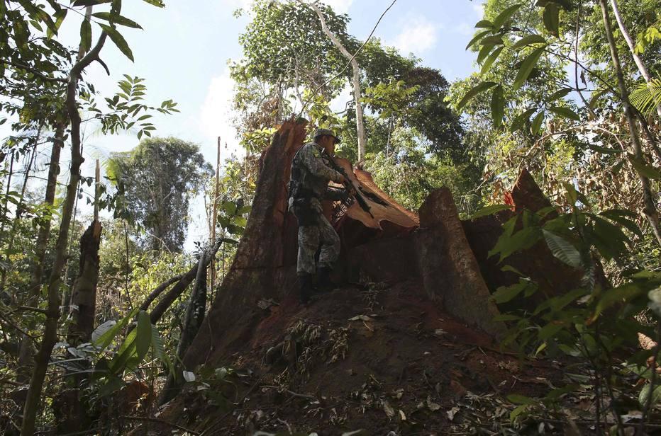 Governo apresenta projeto de lei que reduz floresta na Amazônia https://t.co/OVhXFSgula
