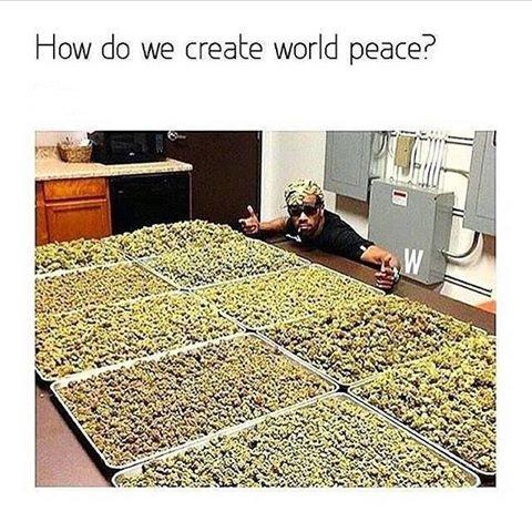 How do we create world peace ?  #weed #stoner #follo4folloback #follo4follo #FOLLOTRAIN <br>http://pic.twitter.com/kDqGPTq5gw