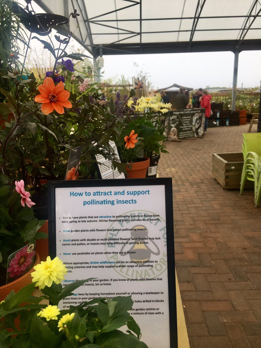 Dunbar Garden Centre on Twitter: \