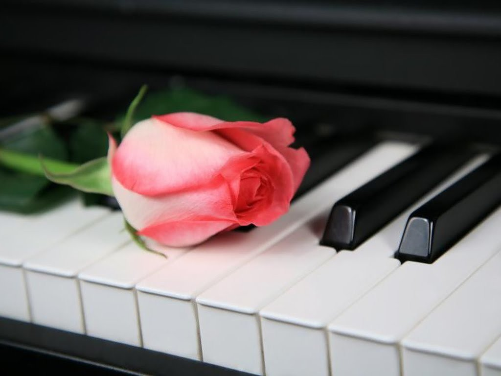 Картинки девушек, картинка с клавишами и цветами