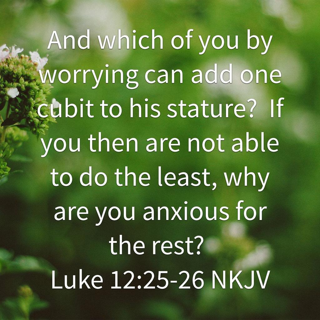 Patti Harriman On Twitter And Which Of You By Worrying Can Add One