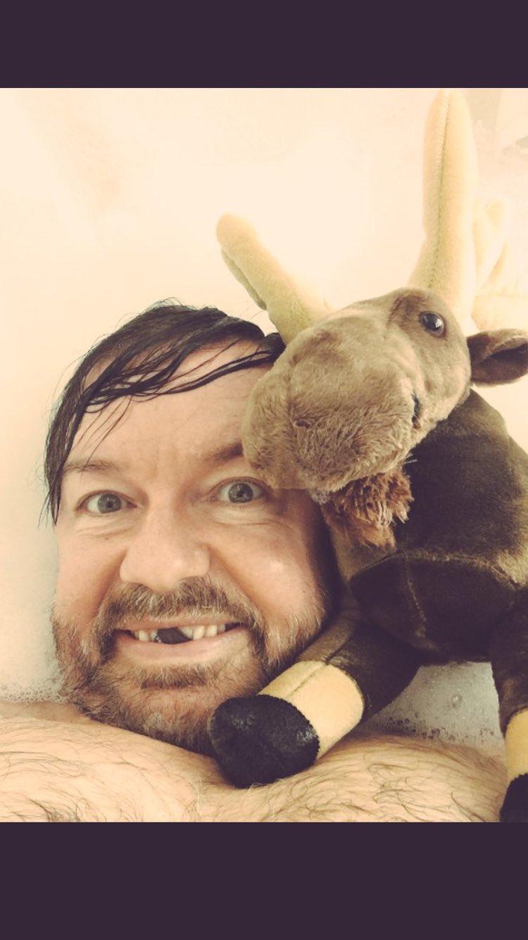 I think I'll sign my little moosey bath friend & leave him somewhere in Toronto. Stay tuned. https://t.co/kVfy8u0QsM