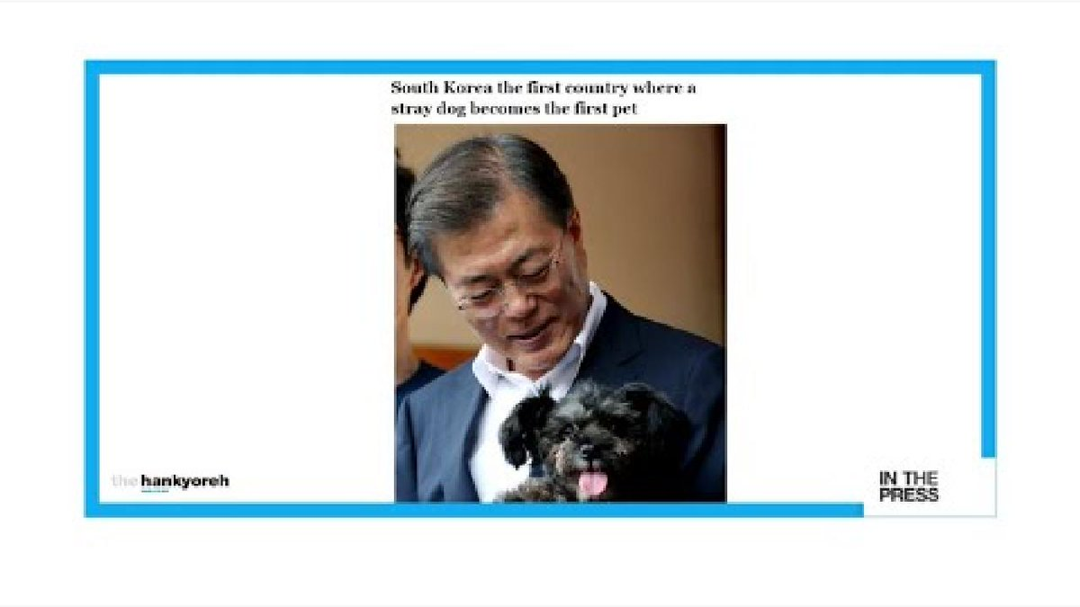 ▶️ A presidential fairy 'tail': Meet Tory, South Korea's new 'First Dog' https://t.co/gWX1ybdWlg