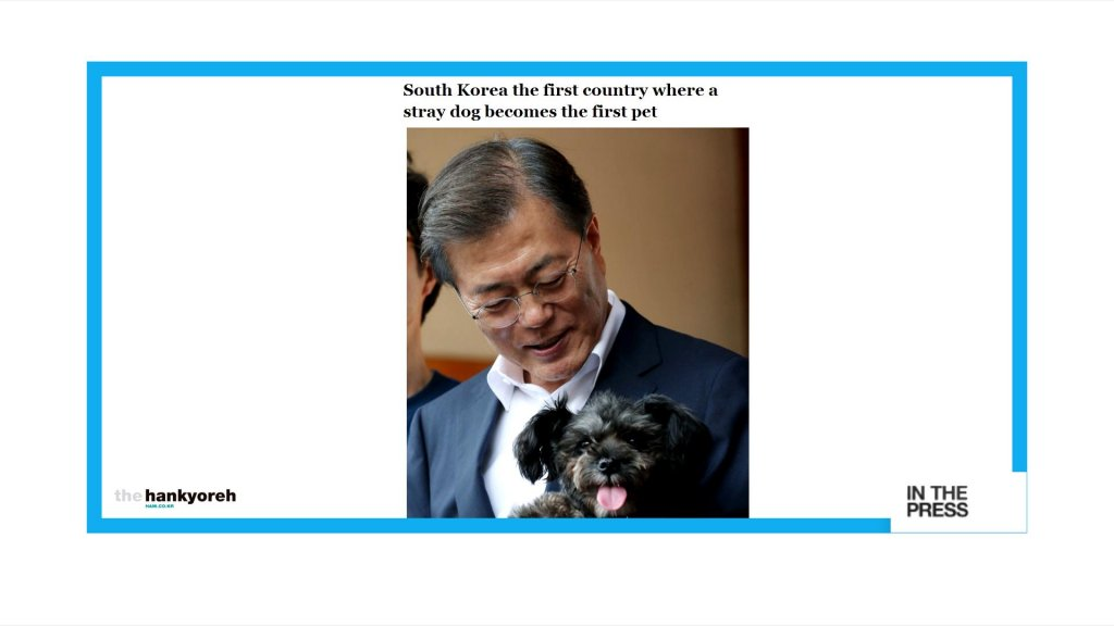IN THE PAPERS - A presidential fairy 'tail': Meet Tory, South Korea's new 'First Dog' https://t.co/1jrQ6525ZM