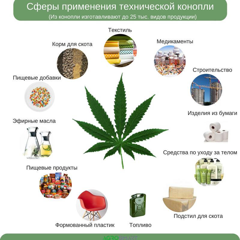 Конопля польза от нее сравнение вред сигарет марихуаны