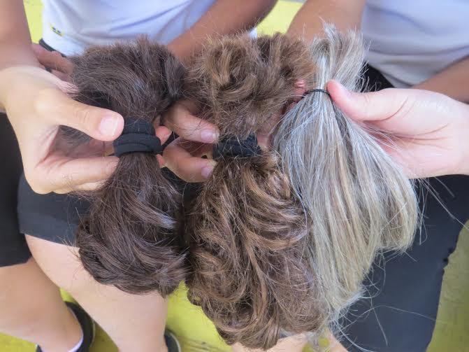 Projeto faz cortes de cabelos para perucas para pessoas com câncer https://t.co/JSHK7tClHa