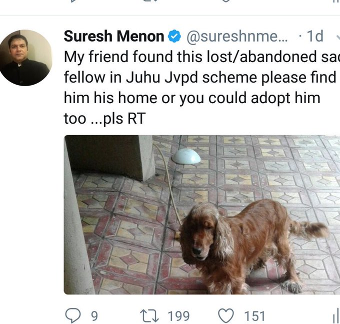 Good news our friend has been adopted by a family in Bandra 😊😊😊😊 https://t.co/GoXVXDlUJs