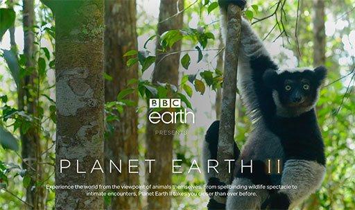 BBC 放出长达 50 小时的高清《地球脉动2》无解说舒缓背景声音版 https://t.co/UC3NkUDsiS https://t.co/O7eDfLvYBL