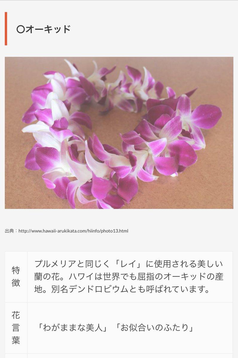 先生あのね!エウリュアレの花飾りにね、白い花の中に先っちょ紫がかった花があるからハワイでよく見るやつー!と思って調べました!死にました!現場からは以上です!しんどい!!!