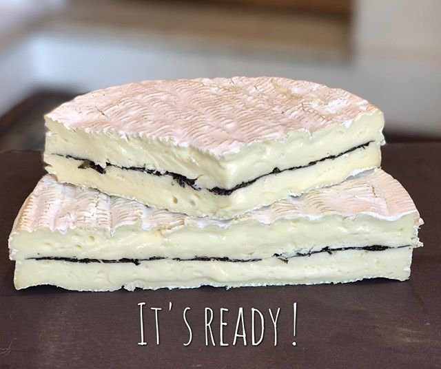 Truffle Brie is ready. Come and get it..... #nsw #truffles #trufflebrie #brie #frenchcheese #manlyfood #manlybeach #artisancheesespic.twitter.com/UUiLZJfwSO
