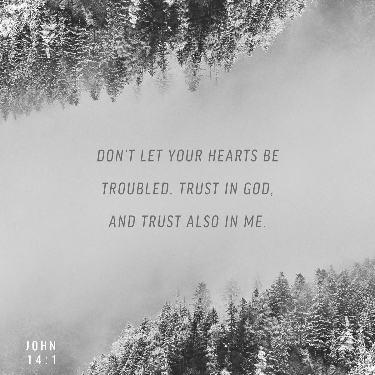 """""""Don't let your hearts be troubled. Trust in God, and trust also in me. https://t.co/Po14NN9i7o https://t.co/Z1DyfBfXP0"""