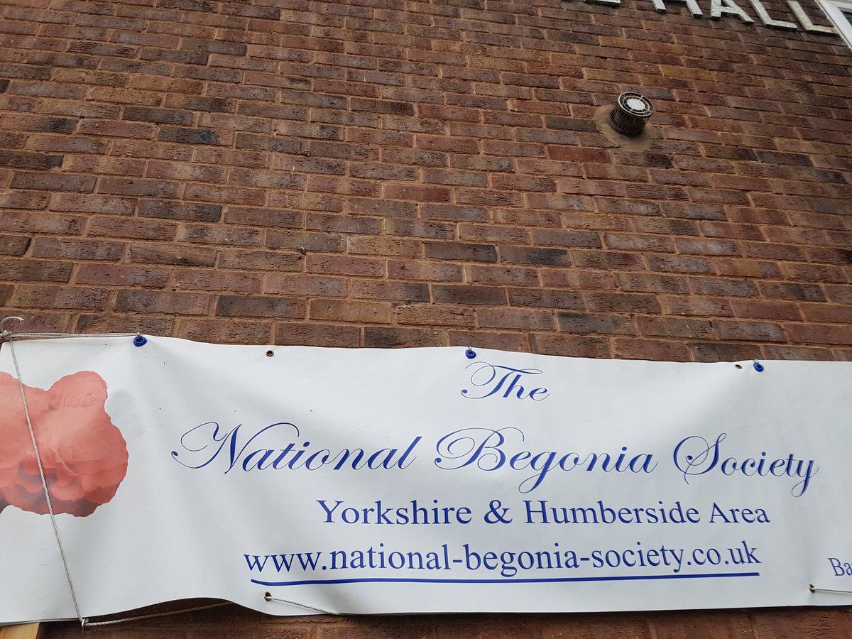 Begonia show #Outwood memorial hall this afternoon. Some amazing green fingered expertise on display.  https://twitter.com/andreajenkyns/status/891303899315007490/photo/1 <br>http://pic.twitter.com/Hjkij6pjLz  &nbsp;  <br>http://pic.twitter.com/3w8wusaD8Q