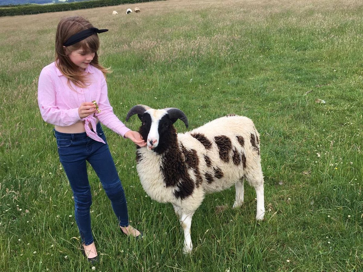 Meet Bob &amp; Steph - Bob was the result of an emergency c-section &amp; seems to be thriving on his Lamlac #lambing17  @MelanieHarper14<br>http://pic.twitter.com/OgnOzddvYN