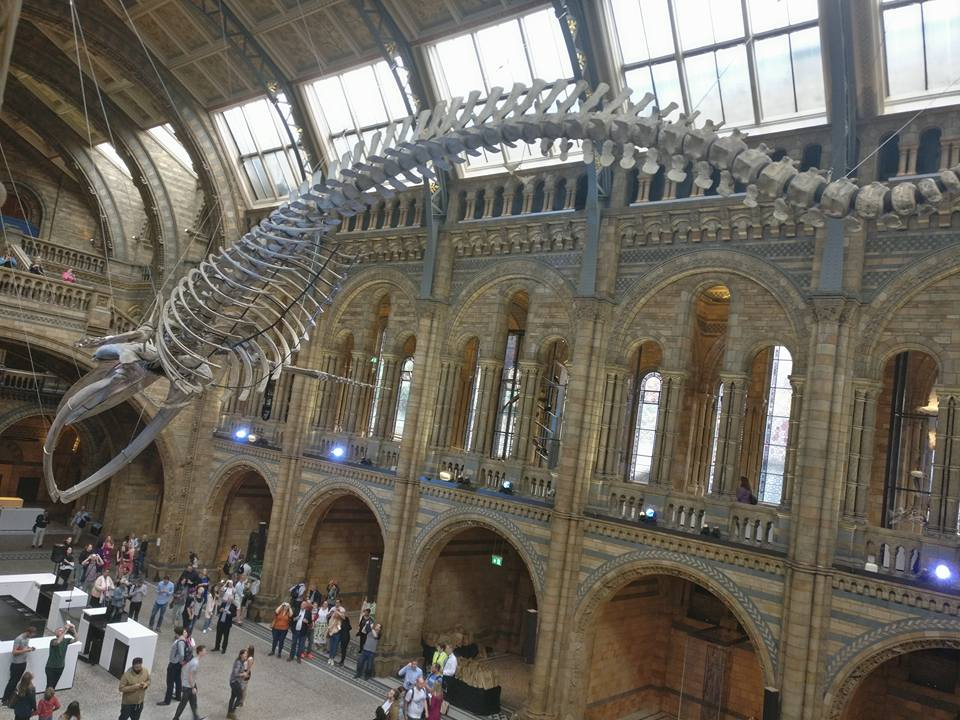 Natural History Museum Of London Opening Hours