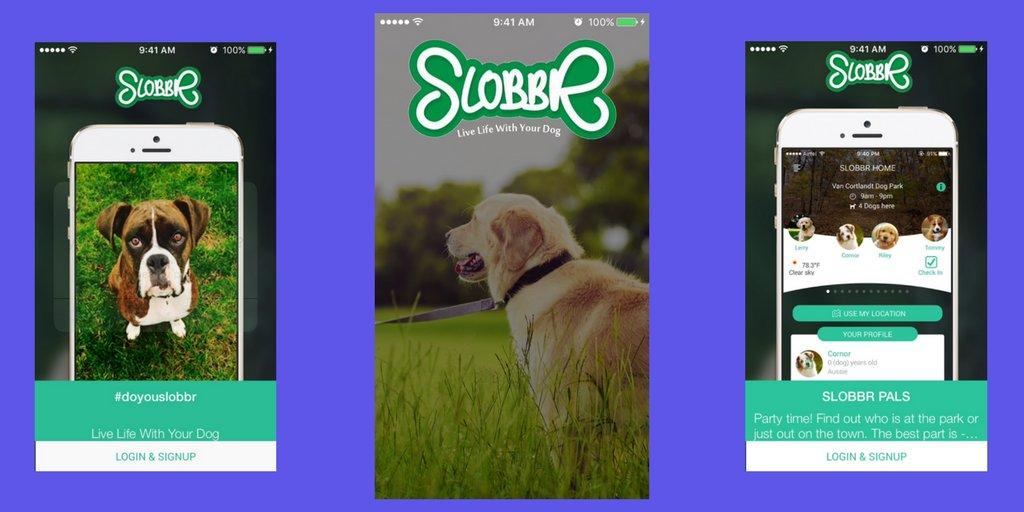 Elasticode On Twitter Doyouslobbr Helps Dog Find Restaurants Hotels Parks That Accept Their Best Friends