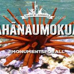 Act now: leave @NOAA a public comment to protect Papahānaumokuākea Marine National Monument https://t.co/VFRVShptK1 #MonumentsForAll