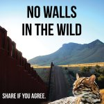 Public Records Sought for Trump's #Borderwall Plans in Wildlife Refuges https://t.co/okiiI4O8Uz