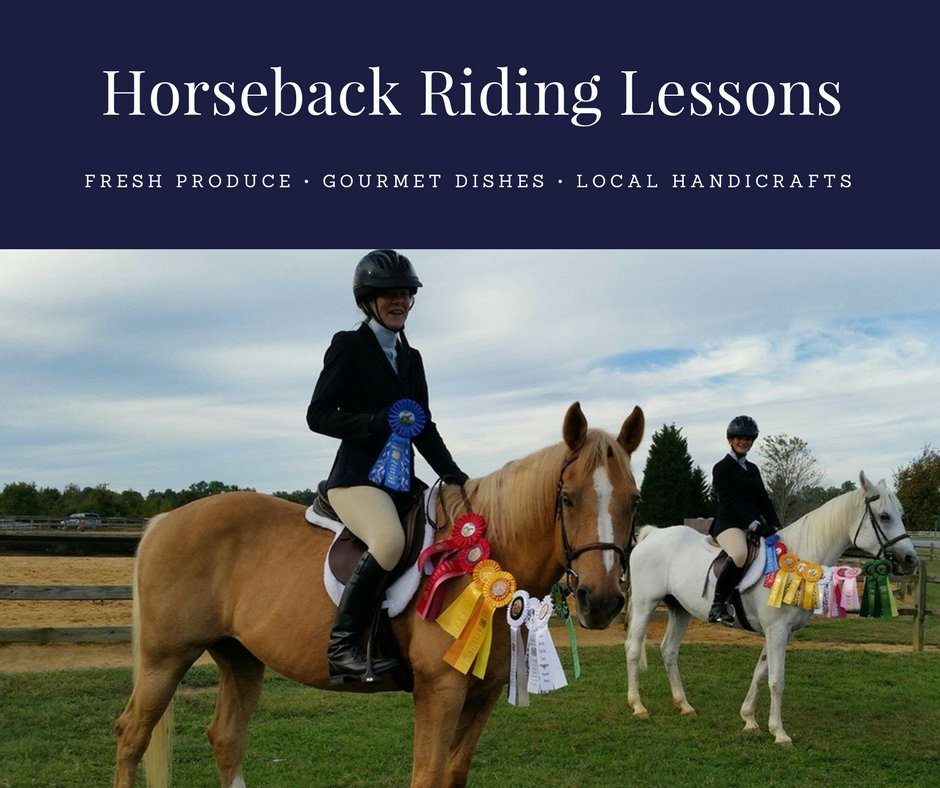 horse riding lessons essay Therapeutic horseback riding a therapeutic riding facility in colorado is the only facility that offers lessons 100% free.