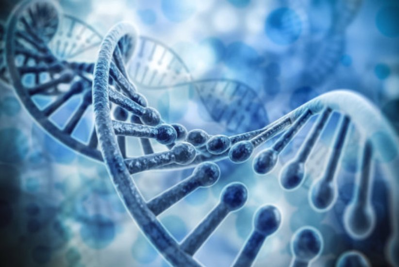 Evolutionary biologist suggests that no more than 25% of the human genome is functional #Mutations #BirthRates #DNA  http:// goo.gl/cLYzWC  &nbsp;  <br>http://pic.twitter.com/FF42tath6J