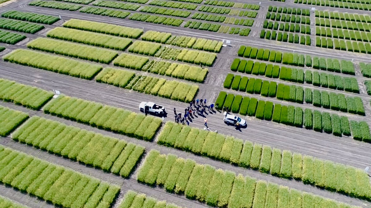 Great demo day for #M3Aerial at the plot trials! #agresearch #drones #agtech<br>http://pic.twitter.com/H99uW1yZrb