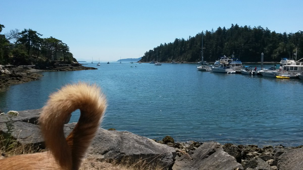 Sucia #island in the San Juans- one of the &quot;Best Places to #boat with #Dogs &quot; in the Pacific NW on #Amazon #Kindle -  http:// amzn.to/2g2UtVt  &nbsp;  <br>http://pic.twitter.com/dA4M6CPRV0