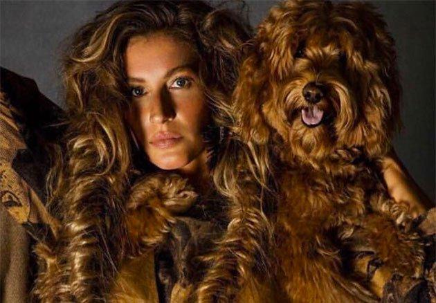 Hoje é aniversário da @giseleofficial, parabéns!!! Relembre o editorial da @VogueParis com ela em prol dos animais: https://t.co/7Zsxe8cyrG