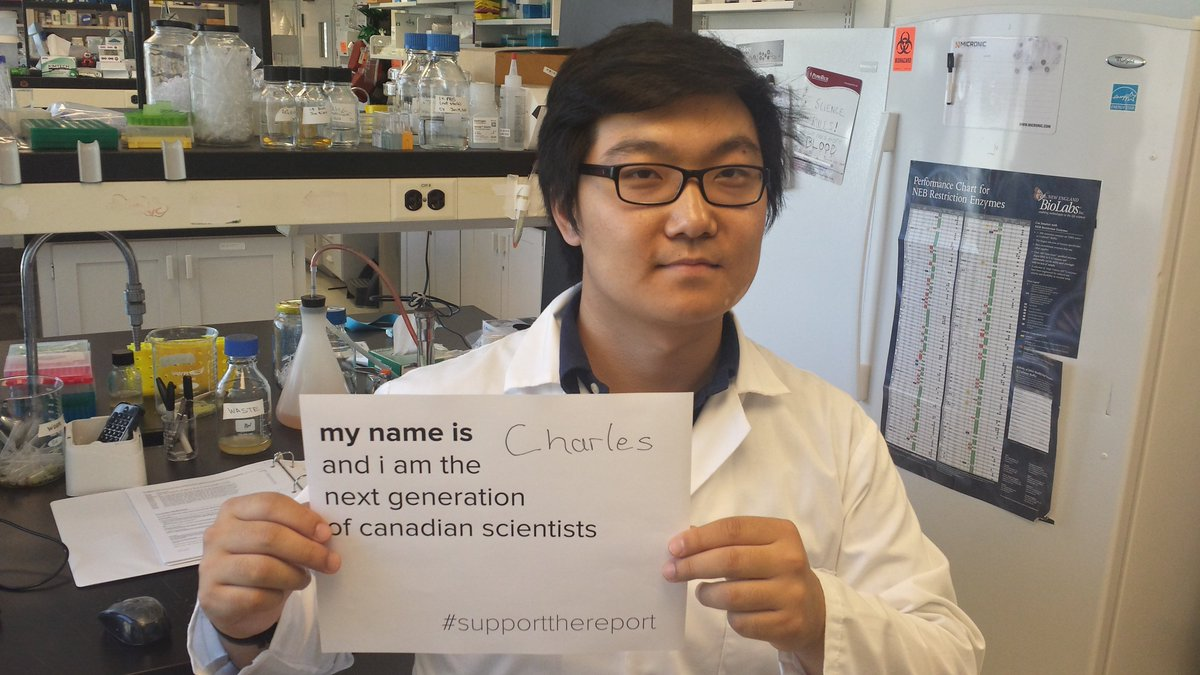 I study how the immune system influences the development of atherosclerosis in the lab of @BryanHeit #SupportTheReport #Students4TheReport<br>http://pic.twitter.com/wKB3FmkjxQ
