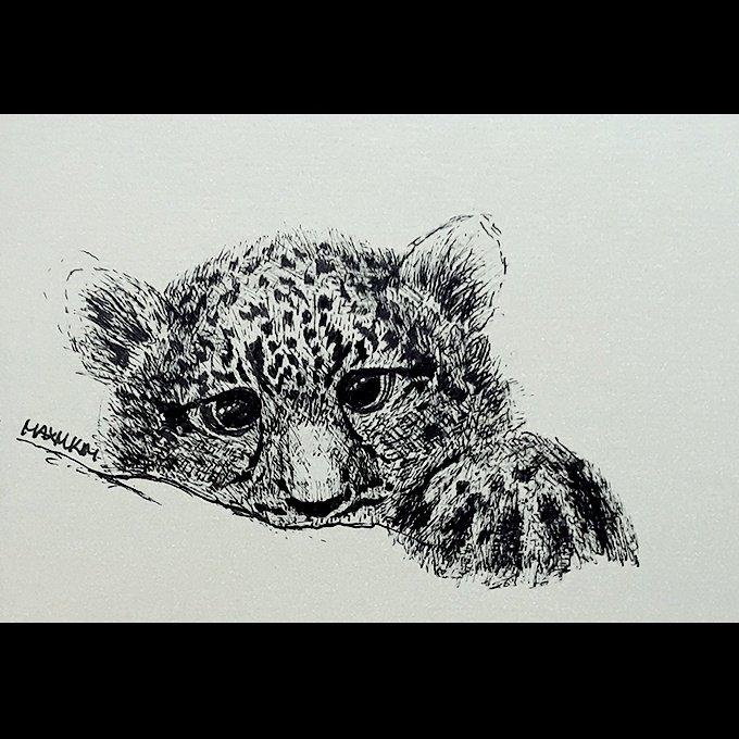 Baby Tiger Sketch Art
