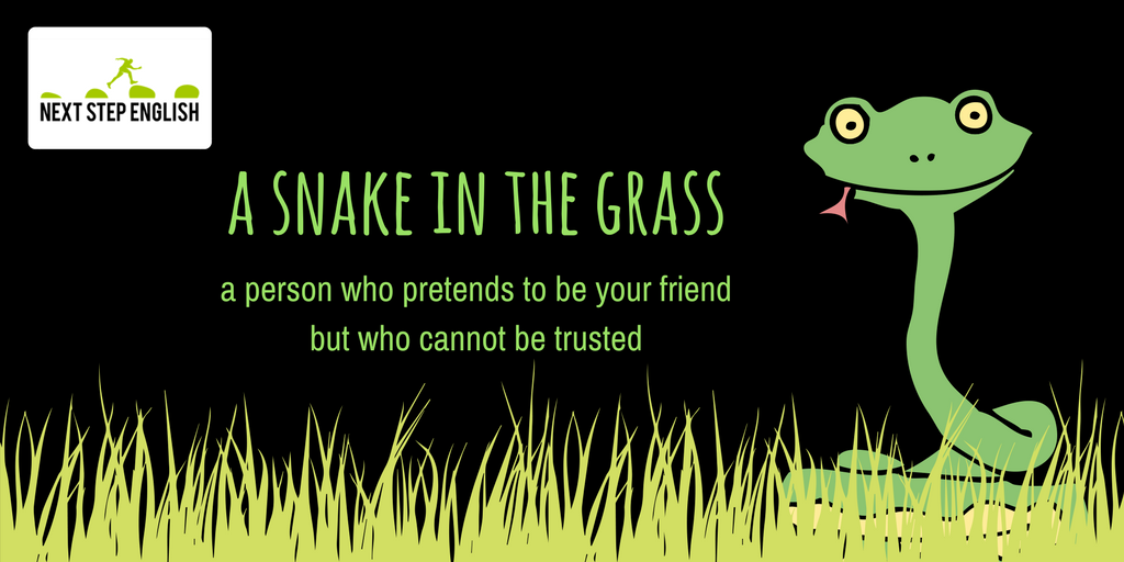 : Kyle invited me to go fishing with him this weekend!  : Watch your back; he&#39;s A SNAKE IN THE GRASS.  #LearnEnglish #idioms #vocabulary<br>http://pic.twitter.com/bwD8BP4Vsg