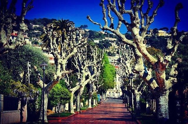 Le Cannet #lecannet #cotedazurfrance #cotedazurnow #frenchriviera #provence #destination #lifestyle #golf<br>http://pic.twitter.com/KoqTr5BJo2