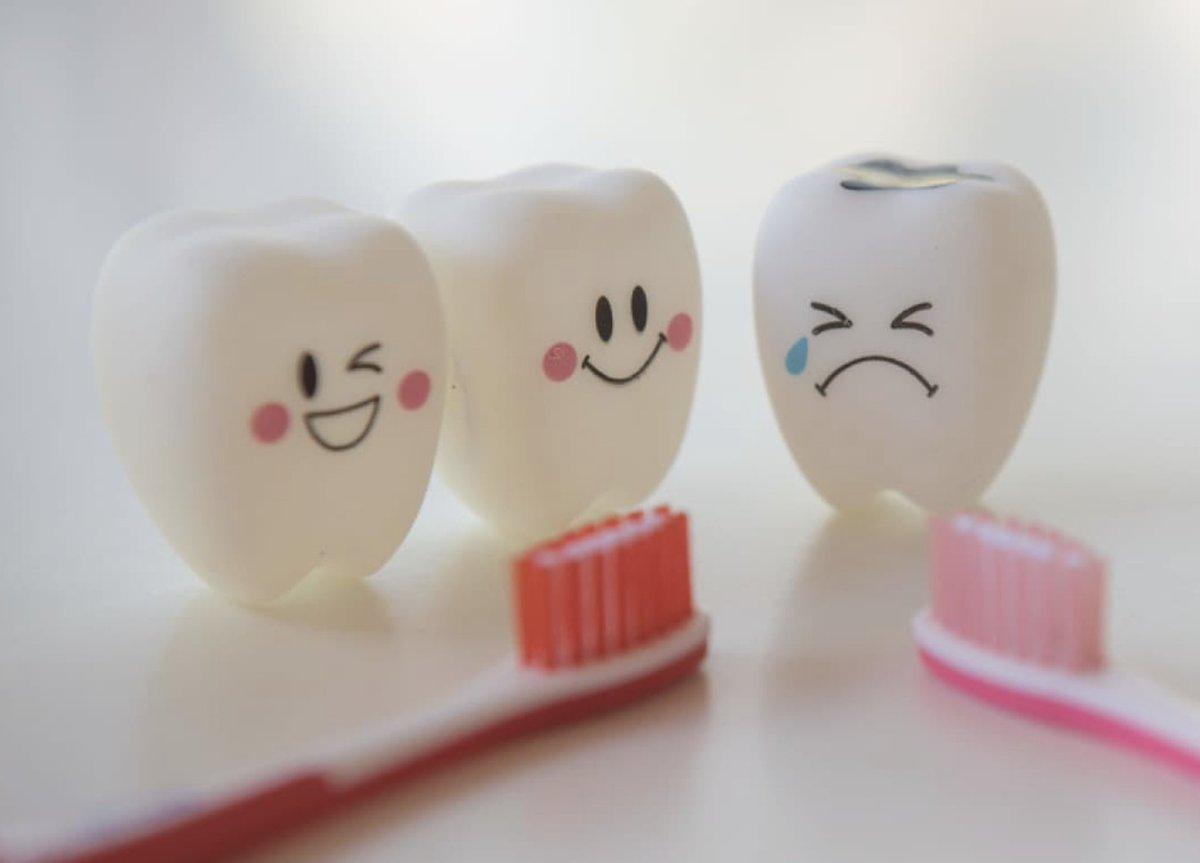 Imagini pentru pictures about tooth