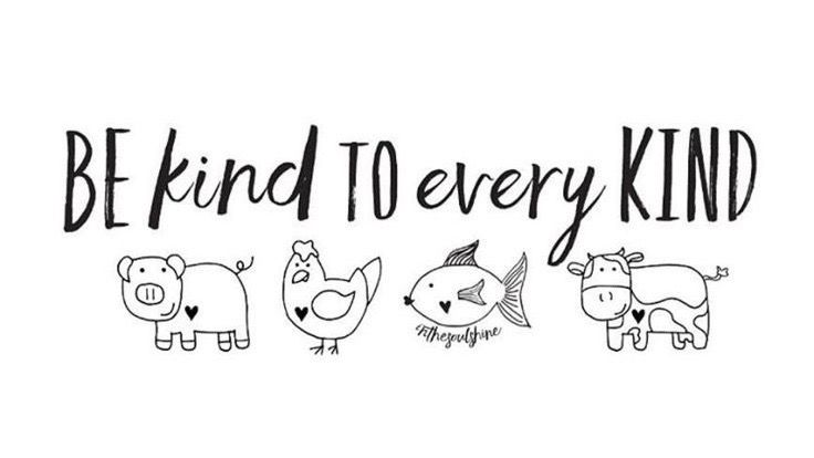 Be kind to every kind. #Kindness to #Animals &amp; #People <br>http://pic.twitter.com/gdXZrtJhBA