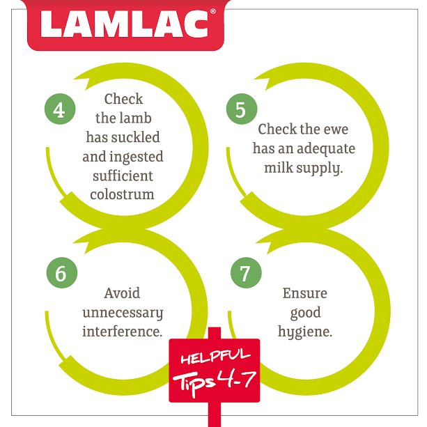 #Toptips to give your lambs the best start, did you see #Toptips 1-3 last week? #lambing17 #sheep365<br>http://pic.twitter.com/2KzxG7b3bh