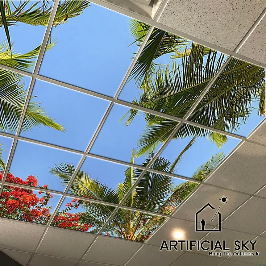 "Artificial Sky: Artificial Sky On Twitter: ""New Surgical Suite Sky Ceiling"