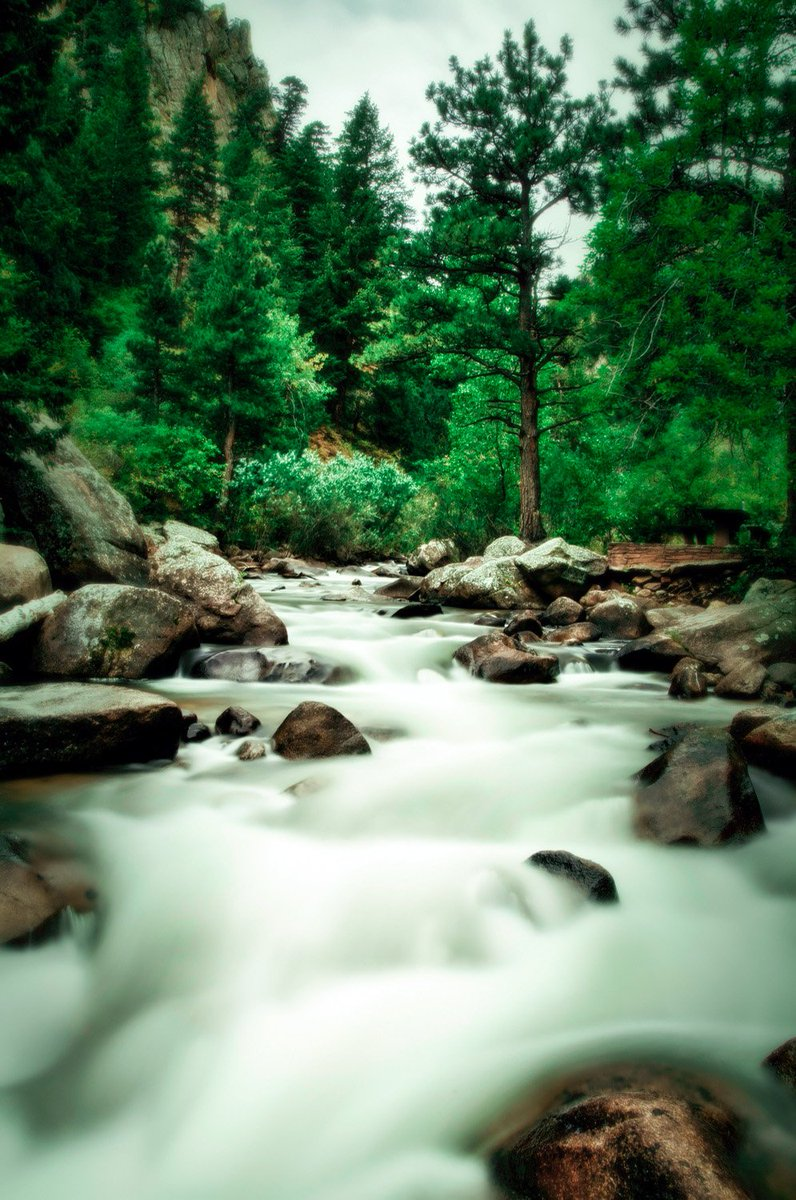 Image By Max and Dee Bernt Android-&gt; https:// goo.gl/vpbDEU  &nbsp;   iPhone-&gt; https:// goo.gl/SG5nxJ  &nbsp;   #green #trees #water #HDWallpapers #Wallpapers<br>http://pic.twitter.com/wH0YwhAcO3